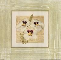 Exotic Floral I Framed Print