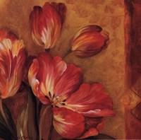 Pandora's Bouquet III Framed Print