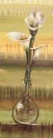 Calla Lilies - mini Fine Art Print