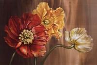 Poppies Fine Art Print