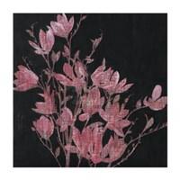 Magnolia, 2005 Fine Art Print