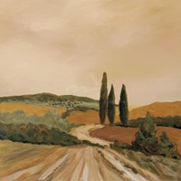 Shady Tuscan Fields Fine Art Print