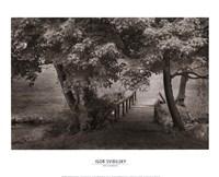 The Old Bridge Fine Art Print