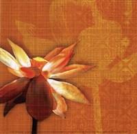 Efflorescence I Framed Print