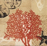Coral Impressions IV Fine Art Print