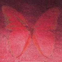 Red Butterfly Fine Art Print