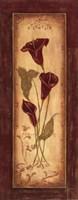 Crimson Blooms I Framed Print
