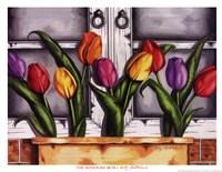 Window Box Fine Art Print
