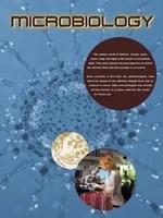 Microbiology Fine Art Print