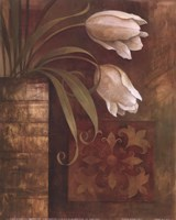 Tulip Interlude I Fine Art Print