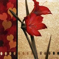 Amaryllis Red Damasque Framed Print