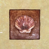 Sea Shell Fine Art Print