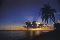 Sunrise Paradise Wall Poster