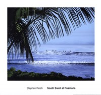 South Swell at Puamana Fine Art Print