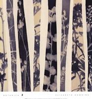 Botanica 2 Framed Print