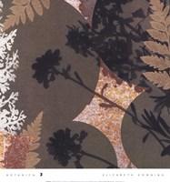 Botanica 3 Framed Print