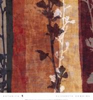 Botanica 5 Framed Print
