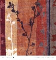 Botanica 6 Framed Print