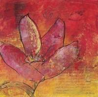 Scripted Bloom 3 Fine Art Print