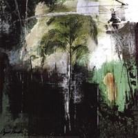 Palma III Framed Print
