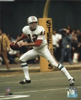 Bob Griese - Prepare to pass Fine Art Print