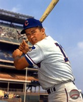 Ron Santo - With Bat, posed Fine Art Print