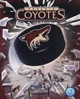 Phoenix Coyotes 2005 - Logo / Puck Fine Art Print