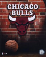 Bulls - 2006 Logo Fine Art Print