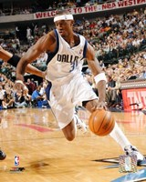 Jason Terry - 2006 Playoff Action Fine Art Print