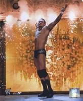 Randy Orton - #366 Fine Art Print