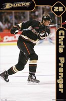 Ducks - Pronger Wall Poster