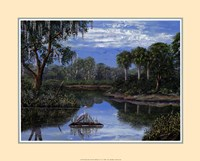Florida Wetlands Fine Art Print