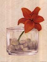 Red Flower In Bowl With Rocks Fine Art Print