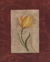 Yellow Flower Fine Art Print