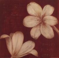 Tan Flowers Fine Art Print