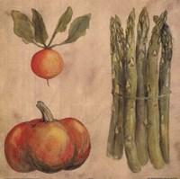Asparagus Radish Framed Print