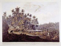 View Near Point De Galle, Ceylon Fine Art Print