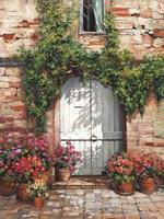 Wooden Doorway, Siena Fine Art Print
