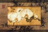 Bamboo Orchids II Fine Art Print