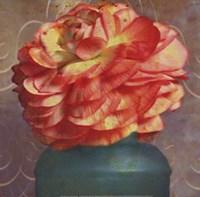 Floral Study IV Framed Print