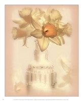 Lovely Daffodil Fine Art Print