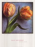 Parrot Tulips II Framed Print