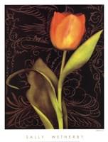 Tulip Manuscript I Framed Print