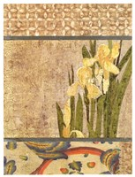 Canteiro De Flores II Fine Art Print