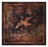 Bird Of Paradise II Framed Print