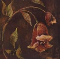 Flowers and Leaves II Fine Art Print
