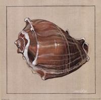 Neptune III Framed Print