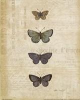Botanical Butterflies I Fine Art Print
