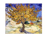 The Mulberry Tree in Autumn, c.1889 Fine Art Print