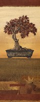 Bonsai IV - Mini Fine Art Print